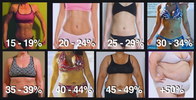 women bodyfat