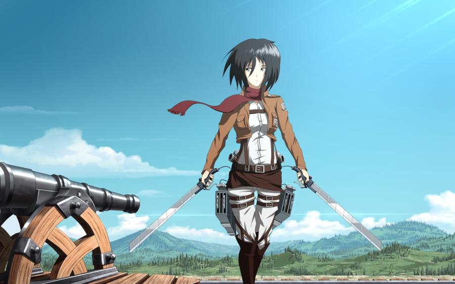 Mikasa Workout 3