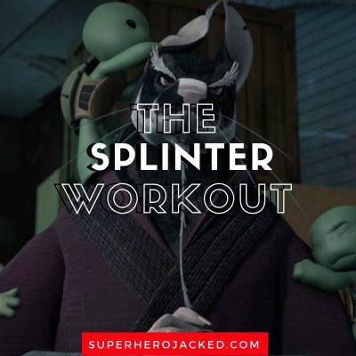 Splinter Workout Routine