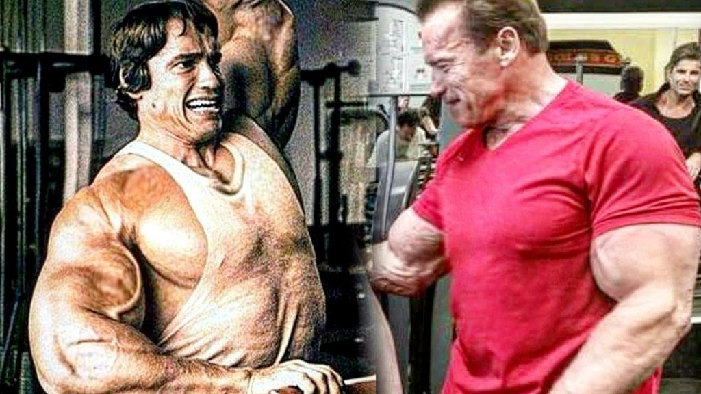 Arnold Schwarzenegger Research