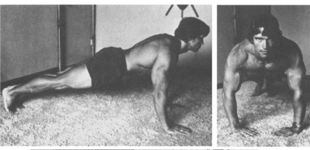 Arnold Schwarzenegger Home Workout 2