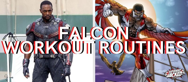 Falcon Workouts