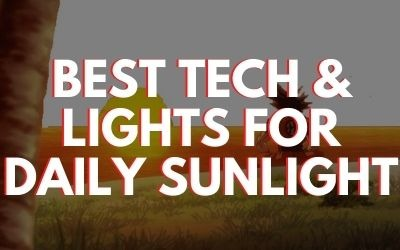 Best Lights for Daily Sun